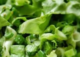 salata-verde-th